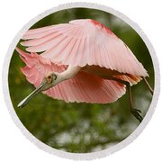 Round Beach Towel featuring the photograph Roseate Spoonbill In Flight by Myrna Bradshaw