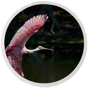 Round Beach Towel featuring the photograph Roseate Spoonbill by Steven Sparks