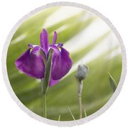 Purple Japanese Water Iris Round Beach Towel by Cindy Garber Iverson