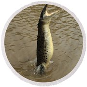 Salt Water Crocodile Round Beach Towel by Bob Christopher