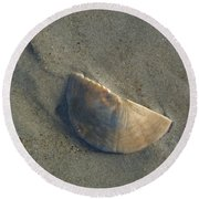 Round Beach Towel featuring the photograph Sandollar In Maine by Nancy Griswold