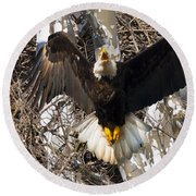 Round Beach Towel featuring the photograph Screaming Eagle  by Randall Branham