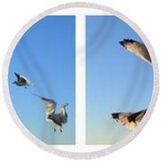 Seagull Collage Round Beach Towel by Michelle Calkins