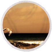 Round Beach Towel featuring the photograph Sennen Seagull by Linsey Williams