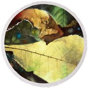Round Beach Towel featuring the painting September Afternoon by Andrew King