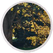 Round Beach Towel featuring the photograph September Dreams by Joseph Yarbrough