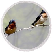 Round Beach Towel featuring the photograph Sharing A Branch by Elizabeth Winter