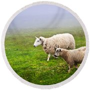 Sheep In Misty Meadow Round Beach Towel