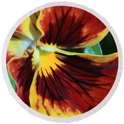 Single Pansy Round Beach Towel