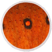 Skin Of Eastern Newt Round Beach Towel by Ted Kinsman