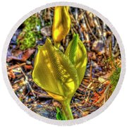 Skunk Cabbage - 2 Round Beach Towel
