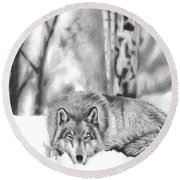Sleeping In The Snow Round Beach Towel