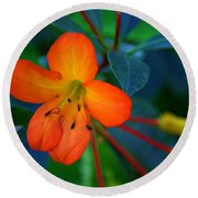 Round Beach Towel featuring the photograph Small Orange Flower by Tikvah's Hope