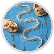 Snake Skeleton And Animal Skulls Round Beach Towel