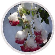 Snow Covered Roses Round Beach Towel