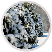 Round Beach Towel featuring the photograph Snow In The Trees by Mark Dodd