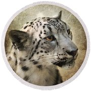 Snow Leopard Portrait Round Beach Towel