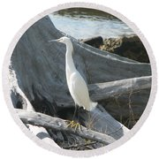 Round Beach Towel featuring the photograph Snowy Egret by Laurel Best
