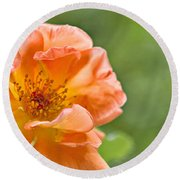 Soft Orange Rose Round Beach Towel by Lana Trussell