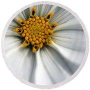 Round Beach Towel featuring the photograph Sonata Cosmos White by Henrik Lehnerer
