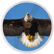 Round Beach Towel featuring the photograph Spread Eagle by Randall Branham