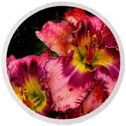 Round Beach Towel featuring the photograph Spring Blooms by Davandra Cribbie