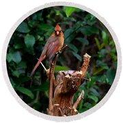 Spring Cardinal Round Beach Towel