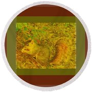Round Beach Towel featuring the photograph Squirrel Under My Tree by Lenore Senior