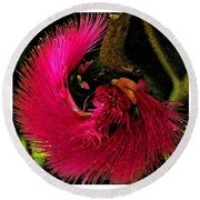 St Kitts Flora Round Beach Towel