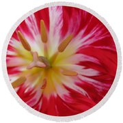 Striped Flaming Tulips. Hot Pink Rio Carnival Round Beach Towel by Ausra Huntington nee Paulauskaite