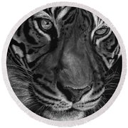 Sumatran Tiger Round Beach Towel