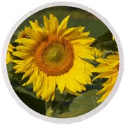 Round Beach Towel featuring the photograph Sun Flower by William Norton