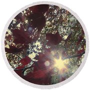 Round Beach Towel featuring the photograph Sun Shine Through by Donna Brown