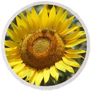 Round Beach Towel featuring the photograph Sunflower by Donna  Smith