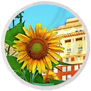 Round Beach Towel featuring the photograph Sunflower In The City by Alice Gipson