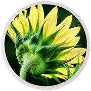 Round Beach Towel featuring the photograph Sunflower With Bee by Lynne Jenkins