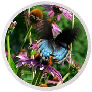 Swallowtail In Motion Round Beach Towel