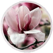 Sweet Magnolia Round Beach Towel by Elizabeth Winter