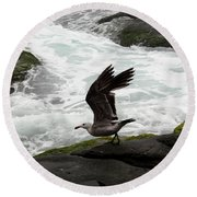Round Beach Towel featuring the photograph Taking Off by Karen Harrison