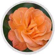 Tangerine Rose Round Beach Towel