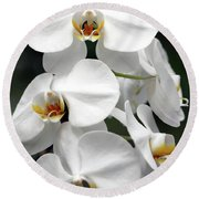 The Beauty Of Orchids  Round Beach Towel