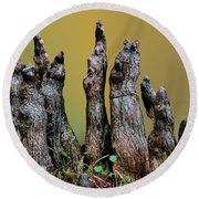 The Cypress Knees Chorus Round Beach Towel
