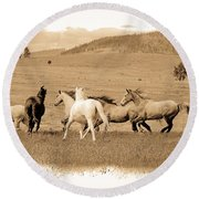 Round Beach Towel featuring the photograph The Horse Herd by Steve McKinzie