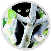 Round Beach Towel featuring the photograph The Little Huntress by Jessica Shelton