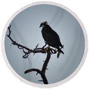 The Osprey Round Beach Towel by Bill Cannon