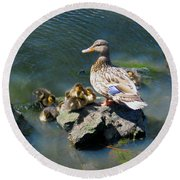 Round Beach Towel featuring the photograph The Swimming Lesson by Rory Sagner