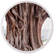 Round Beach Towel featuring the photograph The Twisted And Gnarled Stump And Stem Of A Large Tree Inside The Qutub Minar Compound by Ashish Agarwal