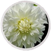The White Dahlia Round Beach Towel