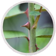 Thorny Stem Round Beach Towel