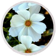 Round Beach Towel featuring the photograph Three White Flowers by Steve McKinzie